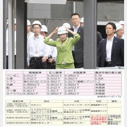 豊洲新市場を訪れた小池都知事(C)日刊ゲンダイ