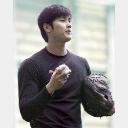 WBC球でキャッチボール(C)日刊ゲンダイ