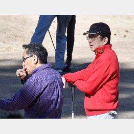 ゴルフの代償は…(C)日刊ゲンダイ