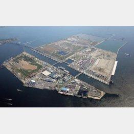 中央防波堤埋め立て地