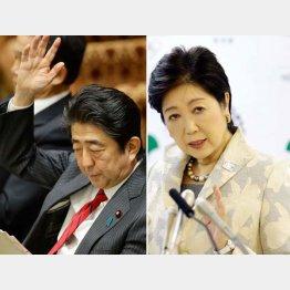 危機感を強める安倍自民党(C)日刊ゲンダイ