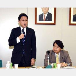 宏池会 の会合でスピーチをする岸田外相(右は林元農相)/(C)日刊ゲンダイ