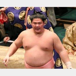 宇良はレスリング出身