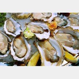 ふるさと納税は海産物も人気(C)日刊ゲンダイ