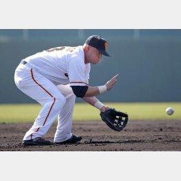 二塁の練習を行うマギー(C)日刊ゲンダイ