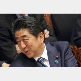 こんな首相が3期9年もやれば日本中が森友化する懸念(C)日刊ゲンダイ