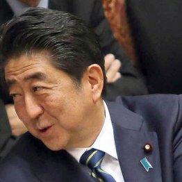 「安倍首相バンザイ」園児と同じ 自民と大メディアの異様