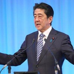 安倍首相への不信は高まるばかり