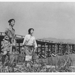 笛吹川(1960年 木下恵介監督)
