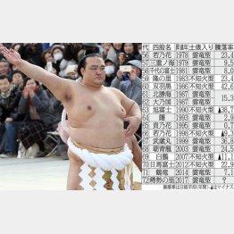 市場も歓迎の「雲竜型」(C)日刊ゲンダイ