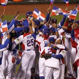 プエルトリコ、ドミニカは日本以上にWBCに熱狂する