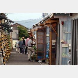 2013年、福島市・南矢野目の仮設住宅の様子/(C)日刊ゲンダイ