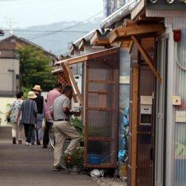 復興阻む2つの壁 Nスペ「シリーズ東日本大震災」の見応え