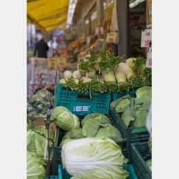 野菜も資源になる(C)日刊ゲンダイ