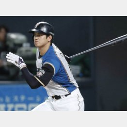 オープン戦初出場で2安打(C)日刊ゲンダイ