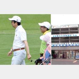 ゴルフ仲間の安倍首相と加計孝太郎氏(右は、今治市役所)/(C)日刊ゲンダイ