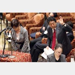 疑惑は内閣全体に広がる(安倍首相と稲田防衛相)/(C)日刊ゲンダイ