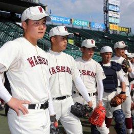 センバツ高校野球は「打高投低」だから投手を探す