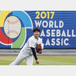 キャッチボールで調整する菅野(C)日刊ゲンダイ