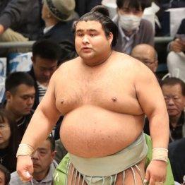 あの巨人投手が梅さんならば大相撲 高安は二郎さんで決まりだろい!