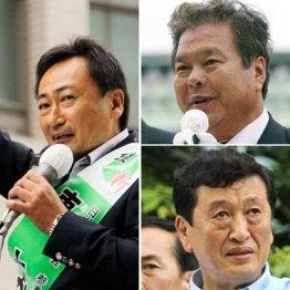籠池証人喚問<下> 鴻池氏以外に挙がった政治家3人の実名