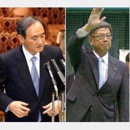 菅官房長官(左)と翁長知事/(C)日刊ゲンダイ