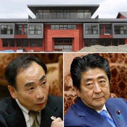 """籠池事件と教科書検定の表裏一体 日本中が""""森友化""""の懸念"""