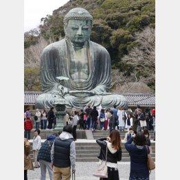 鎌倉といえば大仏様(C)日刊ゲンダイ