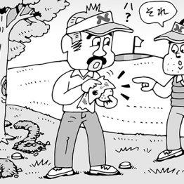 モグラの穴の救済で拾い上げたボールを拭いたケース