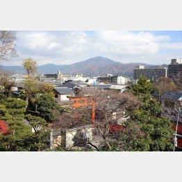望楼から絶景(旧三井家下鴨別邸)(C)日刊ゲンダイ
