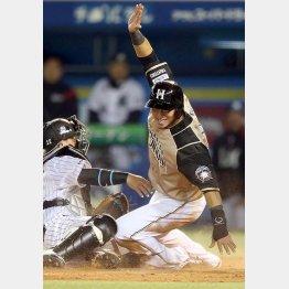 五回に四球で出塁の際、近藤の適時打で生還した中田(C)日刊ゲンダイ