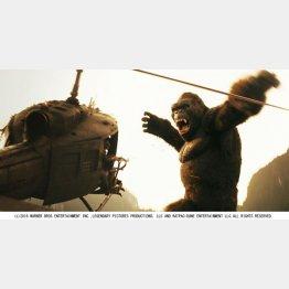 映画「キングコング 髑髏島の巨神」/(提供写真)