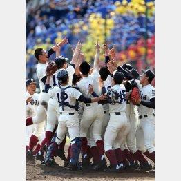 大阪桐蔭が5年ぶり2度目の優勝(C)日刊ゲンダイ