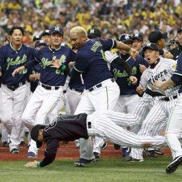 プロ野球の乱闘劇で大騒ぎするスポーツ紙に違和感
