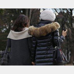 ダウンコートの羽毛も…(C)日刊ゲンダイ