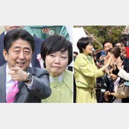 「桜を見る会」の安倍夫妻(右=観客とハイタッチしまくる昭恵夫人)/(C)日刊ゲンダイ