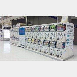 成田空港のガチャ売り場(C)日刊ゲンダイ
