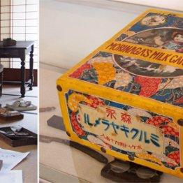 生誕150周年 南方熊楠が過ごした和歌山・田辺市を巡る旅