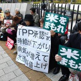 TPP復活信じ 「瑞穂の国」を殺す安倍政権による売国法案