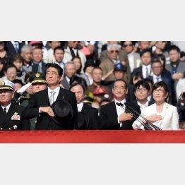 陸上自衛隊観閲式での安倍晋三首相と稲田朋美防衛相(C)日刊ゲンダイ
