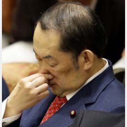 金田法相もビックリか(C)日刊ゲンダイ