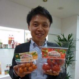 高リコピンで市場席巻 「カゴメ生鮮トマト」の開発秘話