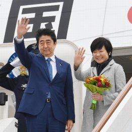 首相にくっついて笑顔で外遊
