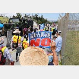 2015年、キャンプ・シュワブ近くの抗議活動の様子(提供写真)