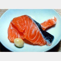昨年の北海道では記録的な不漁に(C)日刊ゲンダイ