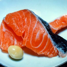 昨年の北海道秋サケ漁は平成に入って最低の漁獲高