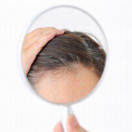 白髪は「年齢のせい」はウソ 最強漢方で若い黒髪が生える