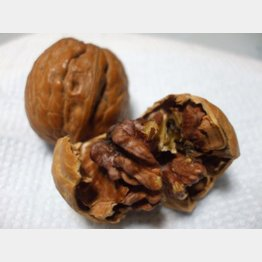 オメガ3脂肪酸を含むクルミ(提供写真)