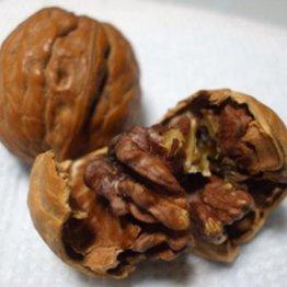 オメガ3脂肪酸を含むクルミ