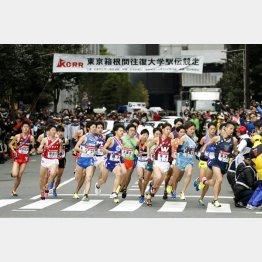 正月の箱根駅伝で一斉にスタートする選手ら(C)共同通信社
